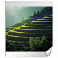 Scenic View Of Rice Paddy Canvas 8  X 10