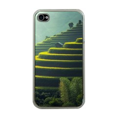Scenic View Of Rice Paddy Apple Iphone 4 Case (clear)