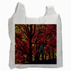 Autumn Colorful Nature Trees Recycle Bag (one Side)