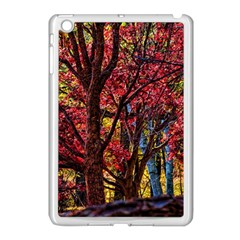 Autumn Colorful Nature Trees Apple Ipad Mini Case (white)