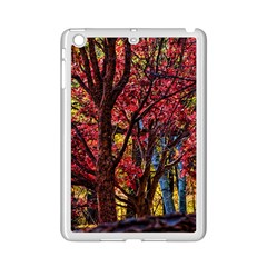 Autumn Colorful Nature Trees Ipad Mini 2 Enamel Coated Cases by Samandel