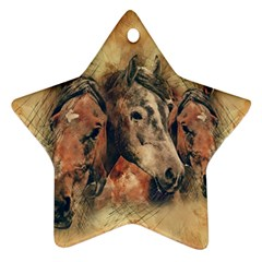 Head Horse Animal Vintage Star Ornament (two Sides)