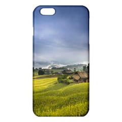 Vietnam Terraces Rice Silk Iphone 6 Plus/6s Plus Tpu Case