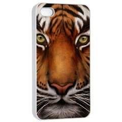 The Tiger Face Apple Iphone 4/4s Seamless Case (white) by Samandel