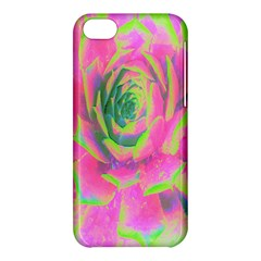 Lime Green And Pink Succulent Sedum Rosette Apple Iphone 5c Hardshell Case