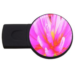 Fiery Hot Pink And Yellow Cactus Dahlia Flower Usb Flash Drive Round (4 Gb) by myrubiogarden