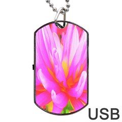 Fiery Hot Pink And Yellow Cactus Dahlia Flower Dog Tag Usb Flash (one Side) by myrubiogarden