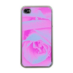 Perfect Hot Pink And Light Blue Rose Detail Apple Iphone 4 Case (clear)