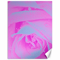 Perfect Hot Pink And Light Blue Rose Detail Canvas 18  X 24  by myrubiogarden