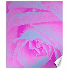Perfect Hot Pink And Light Blue Rose Detail Canvas 20  X 24  by myrubiogarden