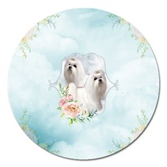 Cute Little Maltese With Flowers Magnet 5  (round) by FantasyWorld7