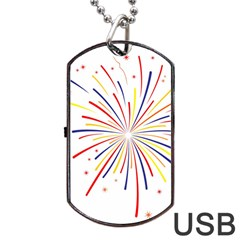 Graphic Fireworks Decorative Dog Tag Usb Flash (two Sides)