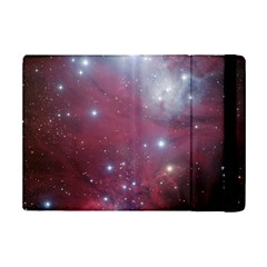 Christmas Tree Cluster Red Stars Nebula Constellation Astronomy Ipad Mini 2 Flip Cases