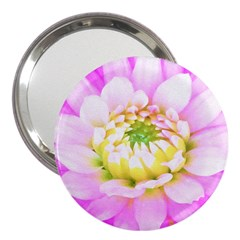 Pretty Pink, White And Yellow Cactus Dahlia Macro 3  Handbag Mirrors