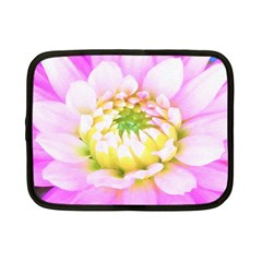 Pretty Pink, White And Yellow Cactus Dahlia Macro Netbook Case (small)