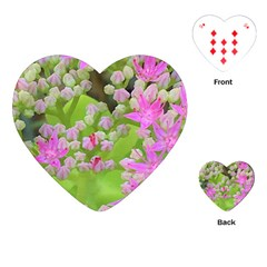Hot Pink Succulent Sedum With Fleshy Green Leaves Playing Cards (heart) by myrubiogarden