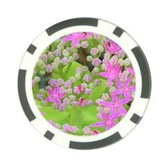 Hot Pink Succulent Sedum With Fleshy Green Leaves Poker Chip Card Guard by myrubiogarden