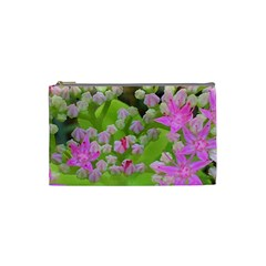 Hot Pink Succulent Sedum With Fleshy Green Leaves Cosmetic Bag (small)