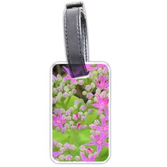 Hot Pink Succulent Sedum With Fleshy Green Leaves Luggage Tags (one Side)