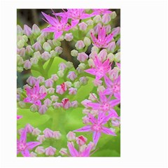 Hot Pink Succulent Sedum With Fleshy Green Leaves Large Garden Flag (two Sides) by myrubiogarden