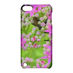 Hot Pink Succulent Sedum With Fleshy Green Leaves Apple Ipod Touch 5 Hardshell Case With Stand