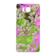 Hot Pink Succulent Sedum With Fleshy Green Leaves Samsung Galaxy Alpha Hardshell Back Case by myrubiogarden