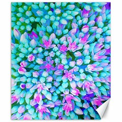 Blue And Hot Pink Succulent Sedum Flowers Detail Canvas 20  X 24  by myrubiogarden