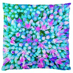 Blue And Hot Pink Succulent Sedum Flowers Detail Large Cushion Case (one Side) by myrubiogarden