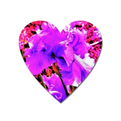 Abstract Ultra Violet Purple Iris On Red And Pink Heart Magnet