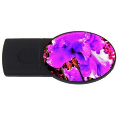 Abstract Ultra Violet Purple Iris On Red And Pink Usb Flash Drive Oval (4 Gb)