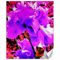 Abstract Ultra Violet Purple Iris On Red And Pink Canvas 16  X 20  by myrubiogarden
