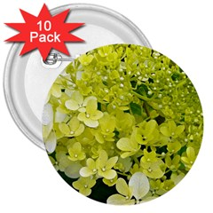 Elegant Chartreuse Green Limelight Hydrangea Macro 3  Buttons (10 Pack)
