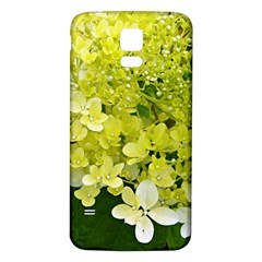 Elegant Chartreuse Green Limelight Hydrangea Macro Samsung Galaxy S5 Back Case (white) by myrubiogarden
