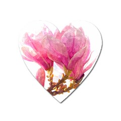 Wild Magnolia Flower Heart Magnet by picsaspassion