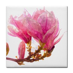 Wild Magnolia Flower Face Towel by picsaspassion
