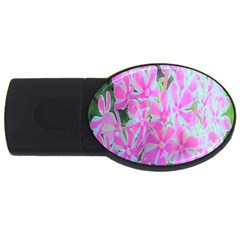 Hot Pink And White Peppermint Twist Garden Phlox Usb Flash Drive Oval (2 Gb) by myrubiogarden