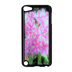 Hot Pink And White Peppermint Twist Garden Phlox Apple Ipod Touch 5 Case (black) by myrubiogarden