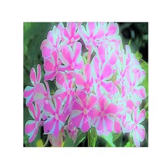 Hot Pink And White Peppermint Twist Garden Phlox Small Satin Scarf (square) by myrubiogarden