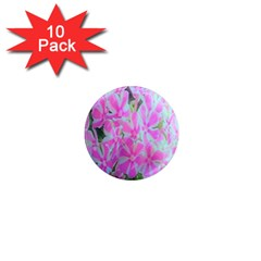 Hot Pink And White Peppermint Twist Garden Phlox 1  Mini Magnet (10 Pack)