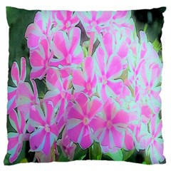 Hot Pink And White Peppermint Twist Garden Phlox Large Cushion Case (one Side) by myrubiogarden