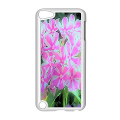 Hot Pink And White Peppermint Twist Garden Phlox Apple Ipod Touch 5 Case (white) by myrubiogarden