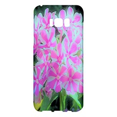 Hot Pink And White Peppermint Twist Garden Phlox Samsung Galaxy S8 Plus Hardshell Case