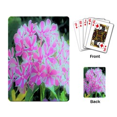 Hot Pink And White Peppermint Twist Garden Phlox Playing Cards Single Design