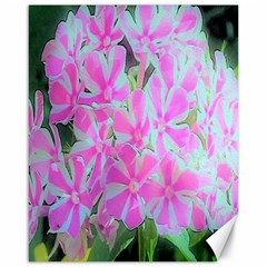 Hot Pink And White Peppermint Twist Garden Phlox Canvas 16  X 20  by myrubiogarden