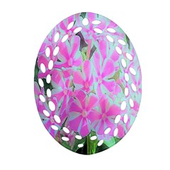 Hot Pink And White Peppermint Twist Garden Phlox Oval Filigree Ornament (two Sides)