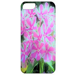 Hot Pink And White Peppermint Twist Garden Phlox Apple Iphone 5 Classic Hardshell Case