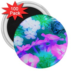Pink, Green, Blue And White Garden Phlox Flowers 3  Magnets (100 Pack) by myrubiogarden