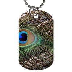 Peacock Tail Feathers Dog Tag (one Side)