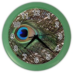 Peacock Tail Feathers Color Wall Clock