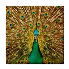 Peacock Feather Bird Peafowl Tile Coasters by Wegoenart
